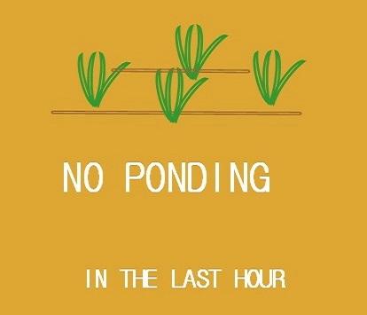 no ponding